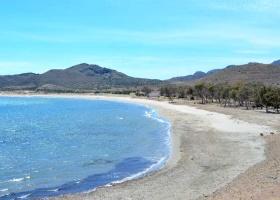 Playa de Genoveses
