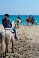 Ruta a caballo en Cabo de Gata