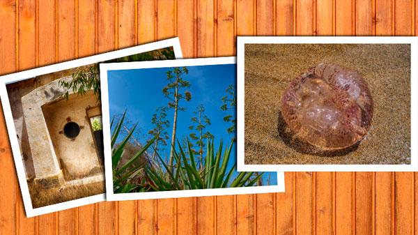¿Por qué Cabo de Gata es un lugar excepcional para la fotografía?